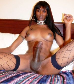 black tranny big ass