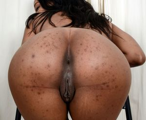 black ass ebony big cock xnxx