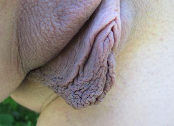 Long pussy lips pics